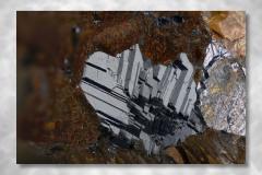 Siderit-Kryolith-Galenit, Abbildungsmassstab 5:1, Bildbreite 4,74 mm, Stack aus 54 Aufnahmen, Objektiv Zeiss Luminar 40 mm, Ivigtut / Grönland