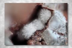 Wavellit, Abbildungsmassstab 7:1, Bildbreite 3,39 mm, Stack aus 19 Aufnahmen, Objektiv Leitz Photar 25 mm, Silver Coine Mine, Nevada / USA